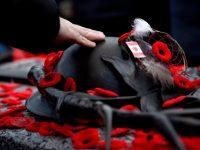 Remembrance Day Etiquette Julie Blais Comeau